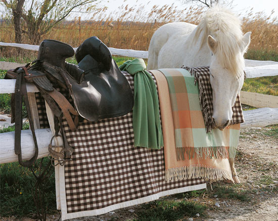 couverture-camargue-collect